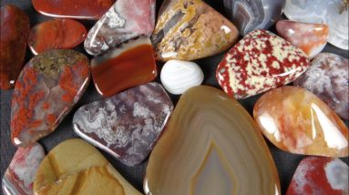 Lots of Variety in these Polished Rocks—Rocks in a Box 57